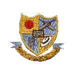 Sandyford Cricket Club
