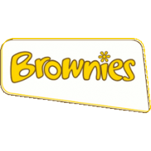 1st Witham St Hughs Brownies