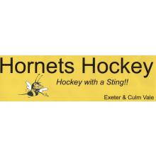 ECV Hornets