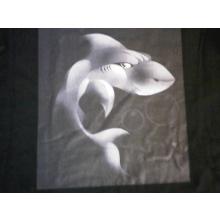Sharks Explorer Scouts - Allesley