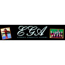 EGA - Elements Gymnastics Academy - BIG GYM Fundraiser