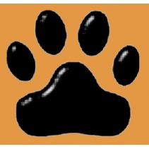 Paw Prints Cat Rescue - Bradford