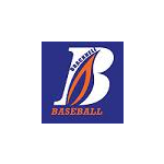 Bracknell Baseball & Softball Club