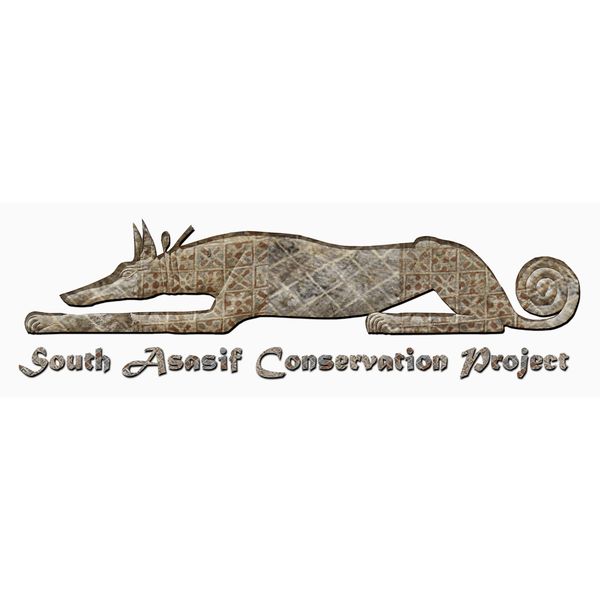 South Asasif Conservation Trust
