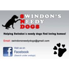 Swindon`s Needy Dogs