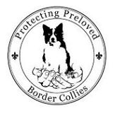 Protecting Preloved Border Collies cause logo