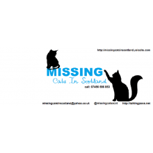 Missing Cats In Scotland