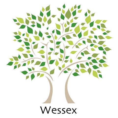 Wessex Primary School - Maidenhead