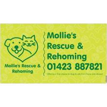 Miss Mollie's Dog Rescue