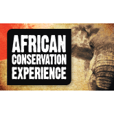 African Conservation Experience 2014 - Megan Dodd