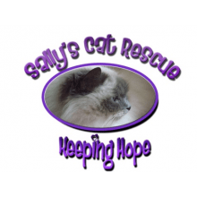 Sally's Cat Rescue
