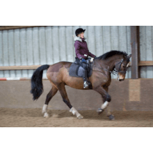 North Cornwall Para Dressage Riders