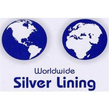 Worldwide Silver Lining