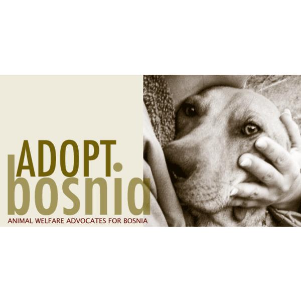 Animal Welfare Advocates for Bosnia Herzegovina