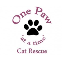 One Paw Cat Rescue