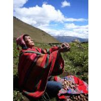 Camps International Peru 2015 - Robert Cannon