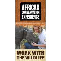 African Conservation Experience 2015 - Megan Hannaford