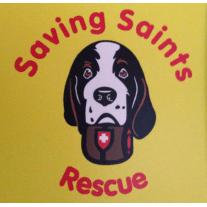 Saving Saints