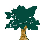 Broad Oak & Horam JFC