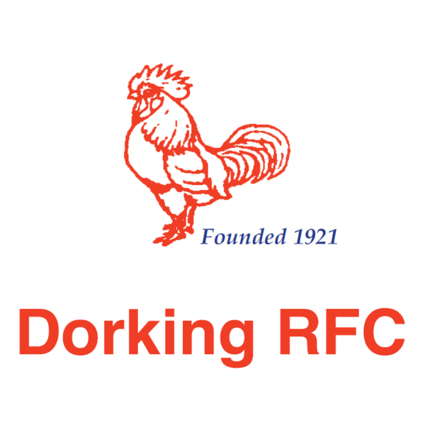 Dorking Rugby