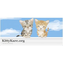 Kittykare Rescue & Re-Homing