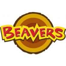 Auchterarder Beavers