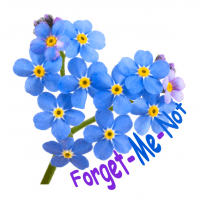 Forget-Me-Not Counselling & Support Services