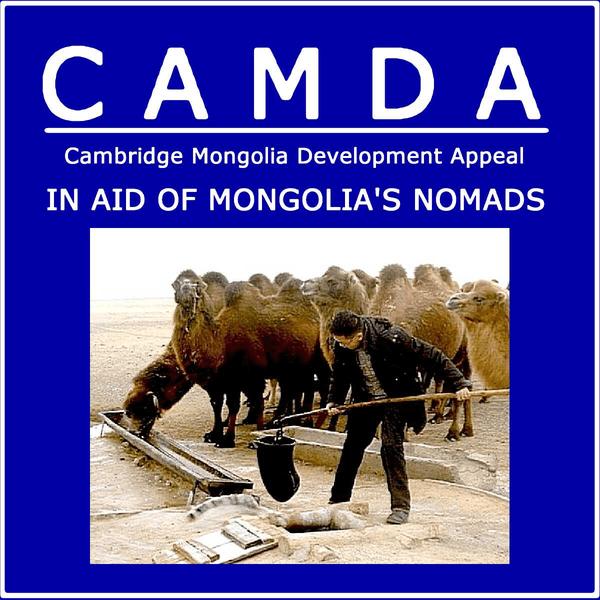 CAMDA cause logo