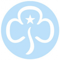4th Norwich Guides