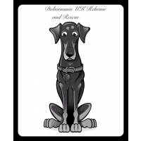 Doberman UK Re-Home and Rescue