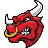 Consett A.F.C. Bulls