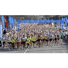 Bupa Great South 2014:  Run for Crocodiles of the World - Wesley Omar