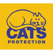 Cats Protection - Cornwall