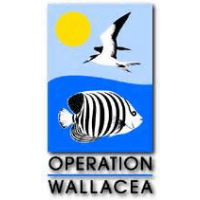 Operation Wallacea: Mexico 2015 - Edward Le Blond James