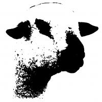 Hampshire Down Sheep Breeders Association