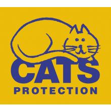 Cats Protection Bridgend Adoption Centre