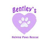 Bentley's Helping Paws Rescue