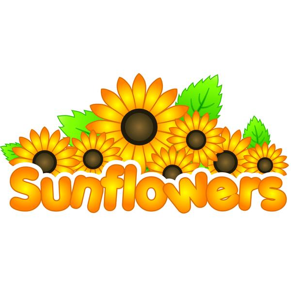 Sunflowers Welford & Pebworth