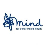 London Marathon for Mind 2015 - Alexandra Williams