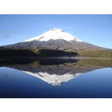 True Adventure Ecuador Expedition 2016 - William Clennell