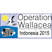 Operation Wallacea Indonesia 2015 - Sophie Thomas