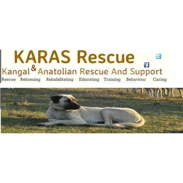 KARAS Rescue