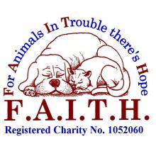 F.A.I.T.H. Animal Rescue