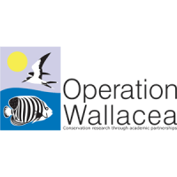 Operation Wallacea Indonesia 2015  - Anni Walsh