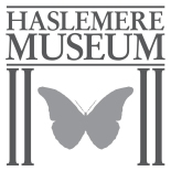 Museum in a Million Appeal - Haslemere Educational Museum