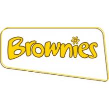 1st Llanmartin Brownies