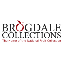 Brogdale Collections