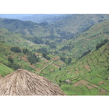 BVDA Uganda 2015 - Sophie Buckle