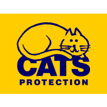 Cats Protection - Cambridge
