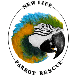 New Life Parrot Rescue & Helpline Service